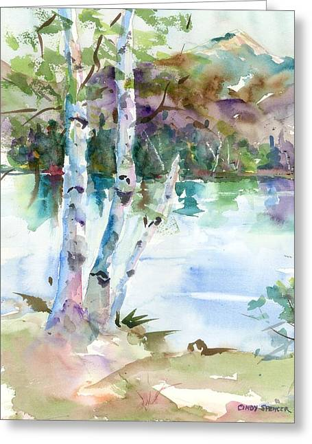 Mt Chocorua Greeting Cards - Birches at Chocorua Greeting Card by Cindy Spencer