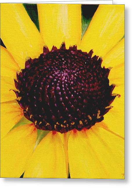 Thomas Faires Greeting Cards - Black Eyed Susan Greeting Card by Thomas Faires