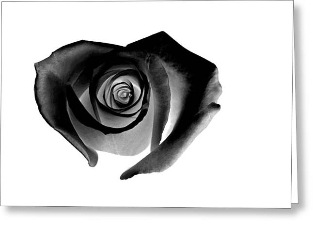 Rose Petal Heart Greeting Cards - Black Rose Greeting Card by Glennis Siverson