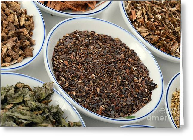Dried Seaweed Greeting Cards - Bladderwrack Herb Greeting Card by Photo Researchers, Inc.