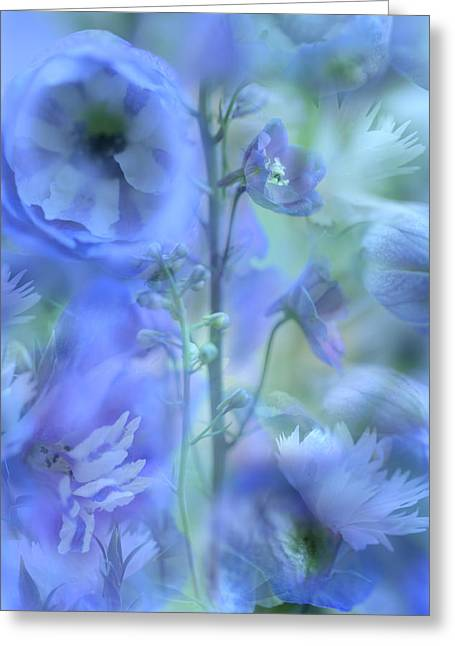 Photo Montage Greeting Cards - Blue Delphinium Greeting Card by Bonnie Bruno