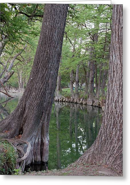 Wimberley Greeting Cards - Blue Hole Tranquility Greeting Card by James Woody