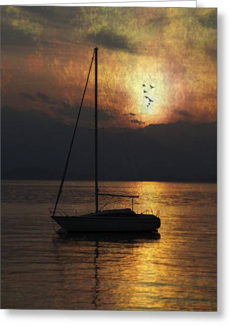 Reflexions Greeting Cards - Boat In Sunset Greeting Card by Joana Kruse