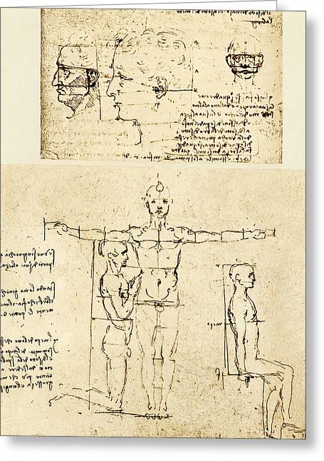 Historical Images Greeting Cards - Body Anatomy Greeting Card by Sheila Terry