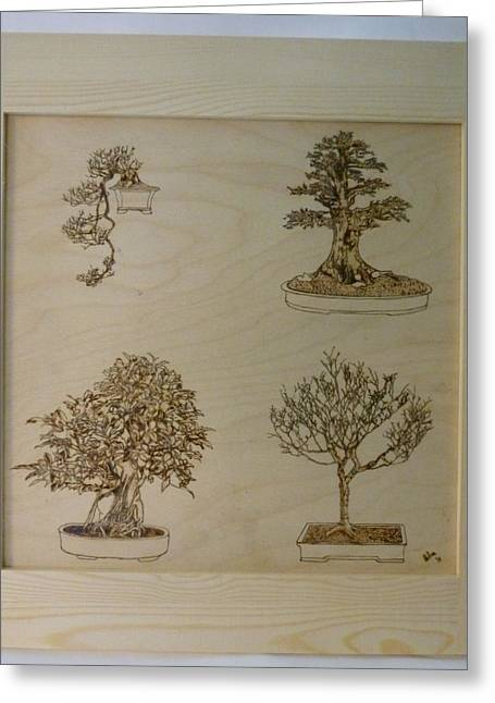 Original Pyrography Greeting Cards - Bonsai Pyrographic Art Original Panel with Frame by Pigatopia Greeting Card by Shannon Ivins