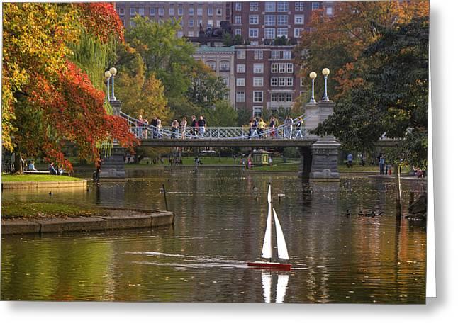 Boston Public Garden Greeting Card by Joann Vitali