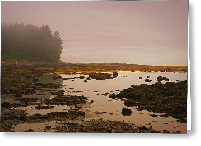 Port Renfrew Greeting Cards - Botanical Beach Greeting Card by Marilyn Wilson