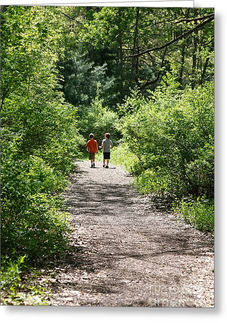 North Country Trail Greeting Cards - Boys Hiking In Woods Greeting Card by Ted Kinsman