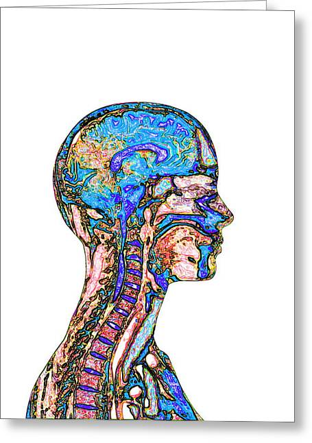 False-colour Greeting Cards - Brain And Spinal Cord, Mri Greeting Card by Mehau Kulyk