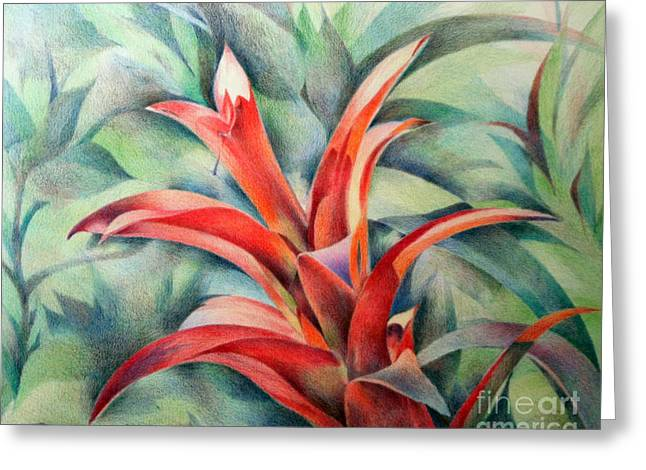 Bromeliad Drawings Greeting Cards - Bromeliad Greeting Card by Natalia Eremeyeva Duarte