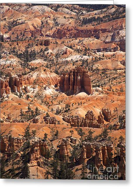 Mystical Landscape Photographs Greeting Cards - Bryce Canyon Greeting Card by Jane Rix