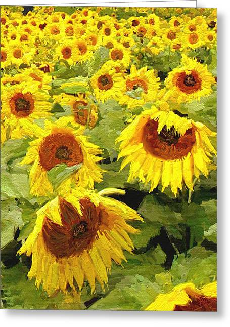 Yellow Sunflower Greeting Cards - Bunching Greeting Card by James Shepherd