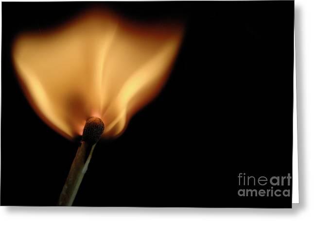 Sami Sarkis Photographs Greeting Cards - Burning match Greeting Card by Sami Sarkis