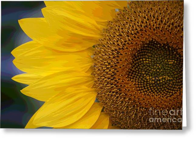 Burst Digital Art Greeting Cards - Burst Of August Greeting Card by The Stone Age