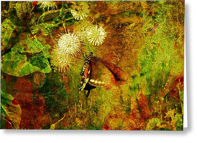 Butterfly Digital Art Greeting Cards - Butterfly On Buttonbush Greeting Card by J Larry Walker