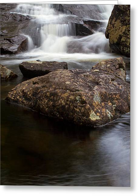 Best Sellers -  - Buttermilk Falls Greeting Cards - Buttermilk Falls Greeting Card by Ed Williams