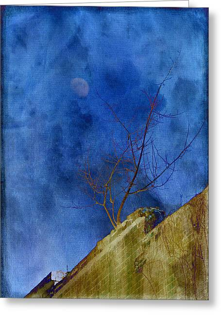 Soft Light Greeting Cards - By The Light Of The Moon Greeting Card by Jan Amiss Photography