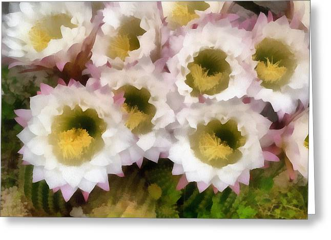 Sweating Paintings Greeting Cards - Cactus flowers Greeting Card by Odon Czintos