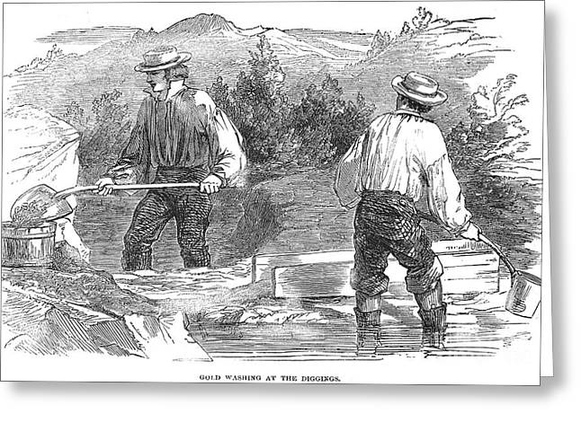 Prospector Greeting Cards - California Gold Rush, 1849 Greeting Card by Granger