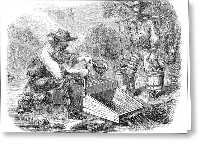 1850s Greeting Cards - California Gold Rush, 1860 Greeting Card by Granger