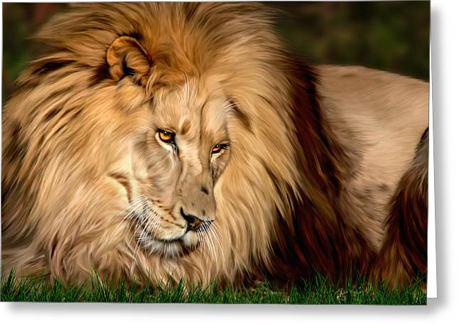 Big Cat Rescue Greeting Cards - Cameron Greeting Card by Big Cat Rescue