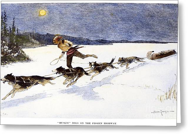 Husky Greeting Cards - Canada: Fur Trade, 1892 Greeting Card by Granger