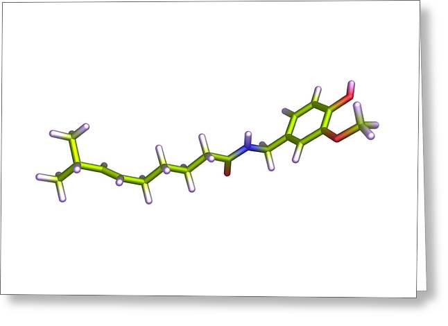 Chilies Greeting Cards - Capsaicin Molecule Greeting Card by Dr Tim Evans