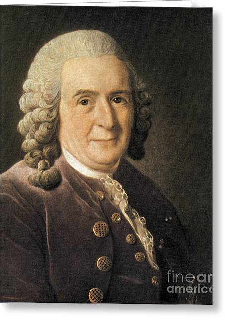 Recently Sold -  - Science Greeting Cards - Carl Linnaeus, Swedish Botanist Greeting Card by Science Source