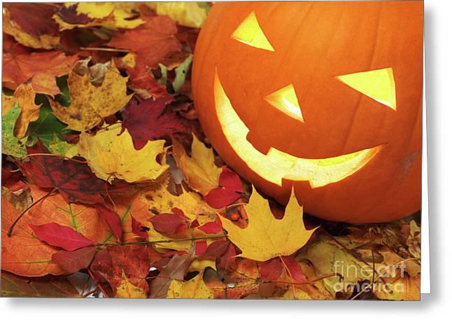 Jackolanterns Greeting Cards - Carved Pumpkin on Fallen Leaves Greeting Card by Oleksiy Maksymenko