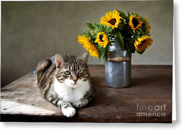 Cat And Sunflowers Greeting Card by Nailia Schwarz