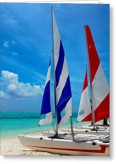 Beach Activities Greeting Cards - Catamarans on the Beach  Greeting Card by Jenny Rainbow