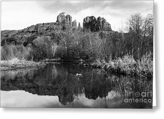 Cathedral Rock Greeting Cards - Cathedral Rock Reflections Landscape Greeting Card by Darcy Michaelchuk