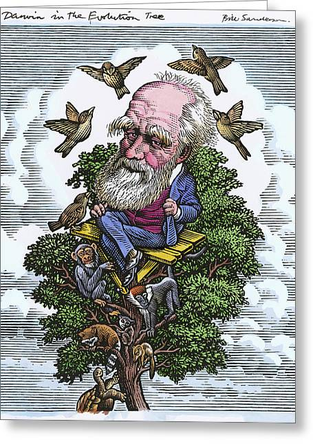 British Portraits Greeting Cards - Charles Darwin In His Evolutionary Tree Greeting Card by Bill Sanderson
