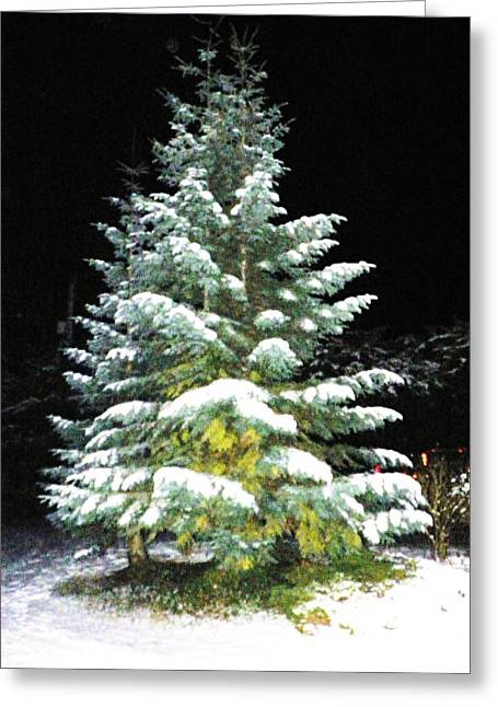 Christmas Greeting Pyrography Greeting Cards - Christmas Tree Greeting Card by Laurie Kidd