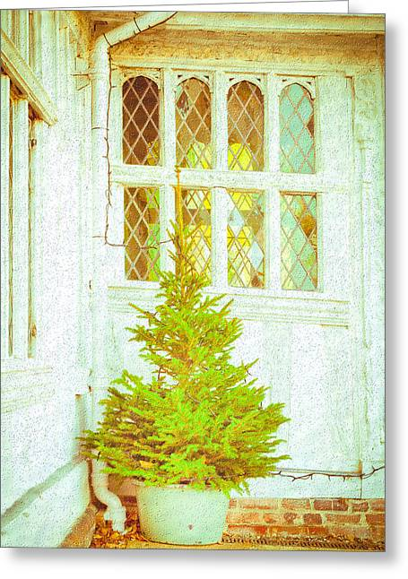 Christmas Day Greeting Cards - Christmas tree Greeting Card by Tom Gowanlock