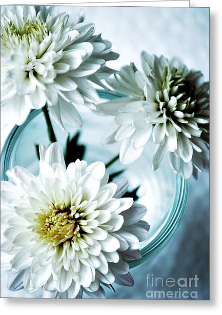 Natures Beauty Greeting Cards - Chrysanthemums Greeting Card by HD Connelly