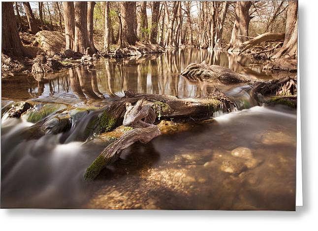 The Nature Center Greeting Cards - Cibolo Creek Greeting Card by Paul Huchton