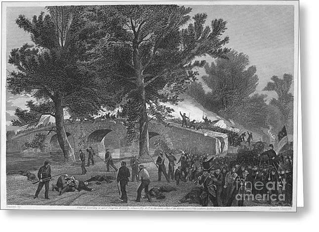 Ambrose Burnside Greeting Cards - Civil War: Antietam, 1862 Greeting Card by Granger