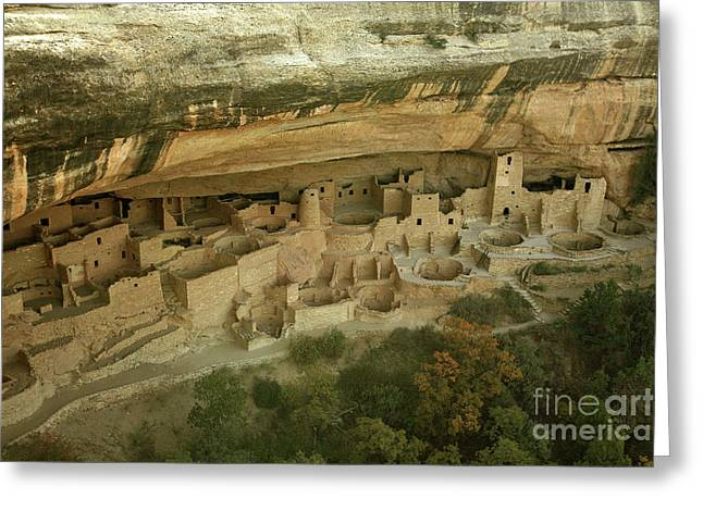Native American Dwellings Greeting Cards - Cliff Palace Greeting Card by Timothy Johnson
