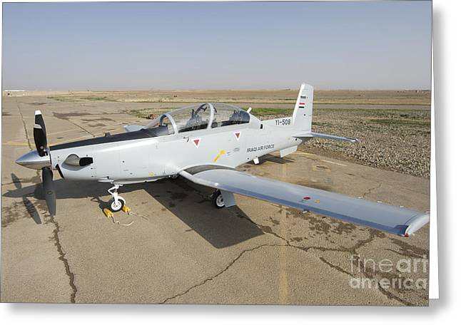 Iraq Greeting Cards - Cob Speicher, Tikrit, Iraq - A T-6 Greeting Card by Terry Moore