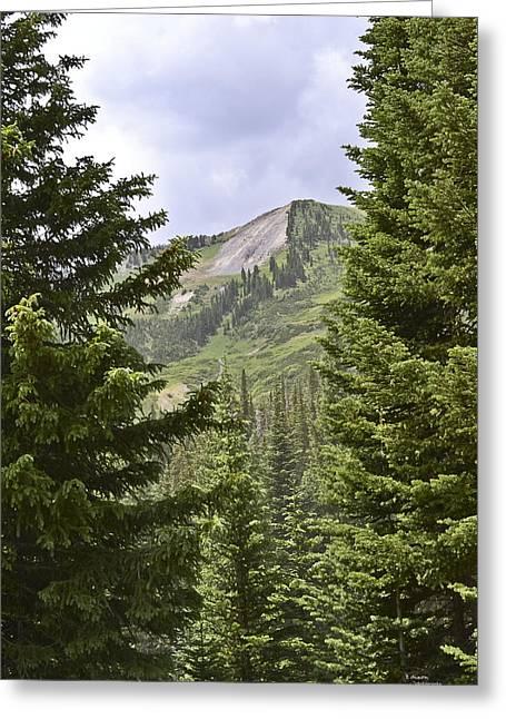 Colorado Pyrography Greeting Cards - Colorado Beauty Greeting Card by Teresa Dixon