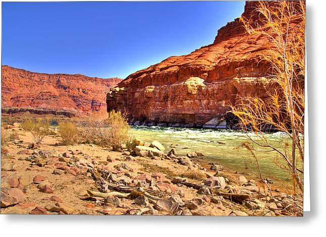 Northern Arizona Greeting Cards - Colorado River  Greeting Card by Jon Berghoff
