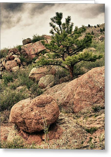 Fineartprint Greeting Cards - Colorado Rocky Mountains Greeting Card by James BO  Insogna