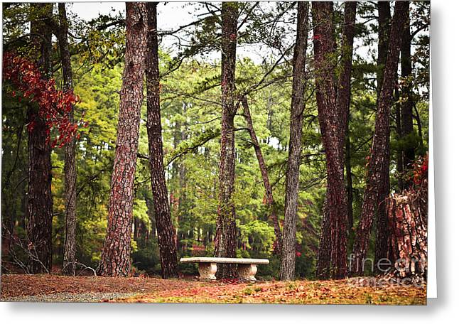 Come Sit A Spell Greeting Card by Kim Henderson
