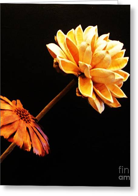 Copper Colored Greeting Cards - Contemporary Natural Flowers Greeting Card by Marsha Heiken