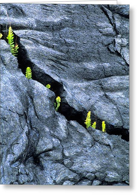 Geomorphology Greeting Cards - Cooled Lava Greeting Card by G. Brad Lewis