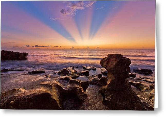 Sunset Posters Greeting Cards - Coral Cove Greeting Card by Debra and Dave Vanderlaan