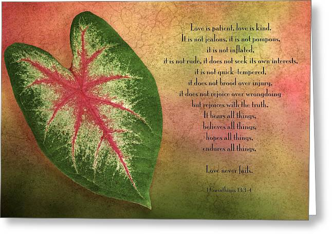 Description Greeting Cards - 1 Corinthians 13 LOVE Greeting Card by Bonnie Barry
