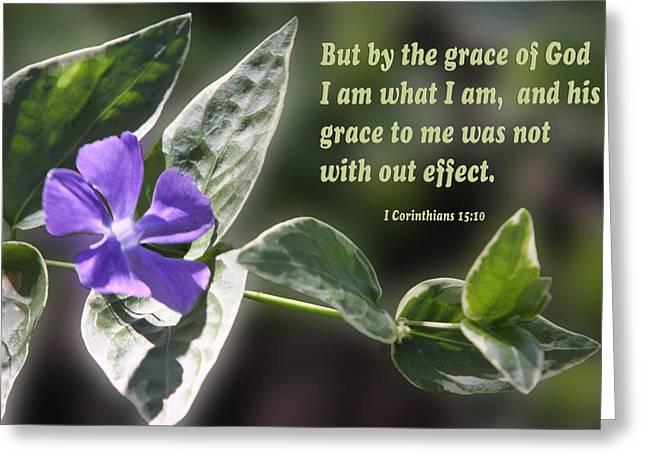 Green Foliage Greeting Cards - 1 Corinthians 15 vs 10 Lavender Blossom Greeting Card by Linda Phelps