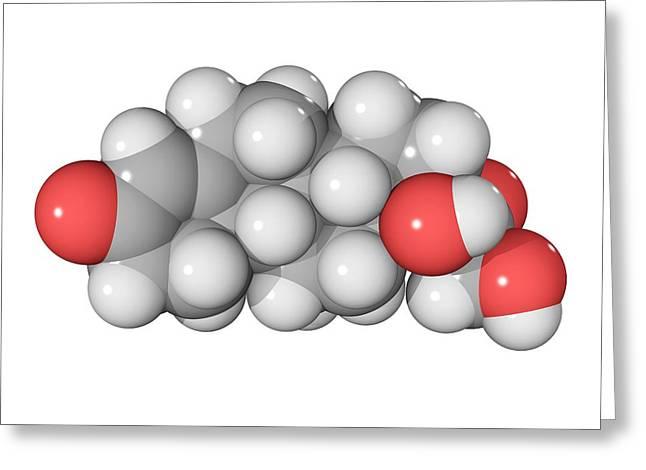 Hydrocortisone Greeting Cards - Cortisol Hormone Molecule Greeting Card by Laguna Design